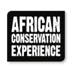 5-African-Conservation-Experience