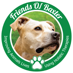 Friends of Baxter