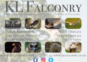 KL falconry logo