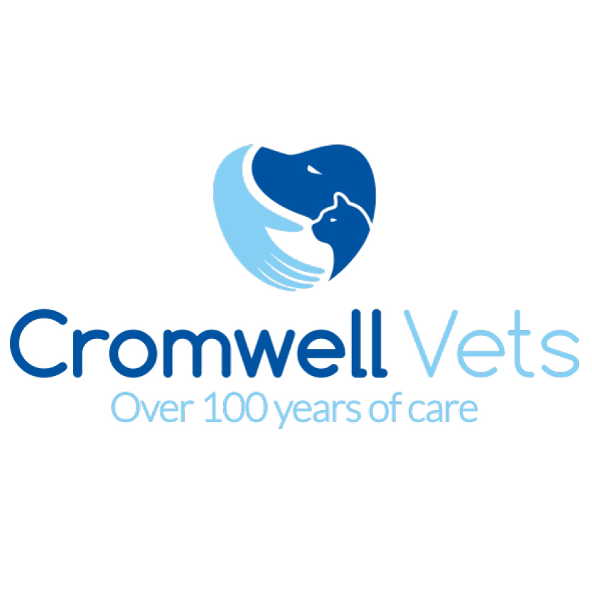 Cromwell Vets